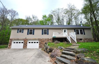 Pocono Lake Single Family Home For Sale: 137 Chippewa Dr