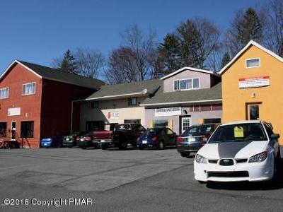 Stroudsburg Commercial For Sale: 3533 Pa-611