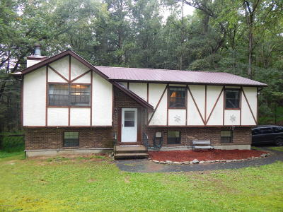 East Stroudsburg Single Family Home For Sale: 302 Campfire