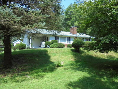 Jim Thorpe Single Family Home For Sale: 8 Balliet Ln