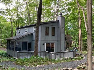 Pocono Lake Single Family Home For Sale: 125 Paxinos Dr