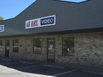 Brodheadsville Commercial For Sale: 1656 Route 209 Rte