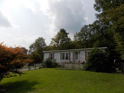Jim Thorpe Single Family Home For Sale: 1455 Mauch Chunk Ln