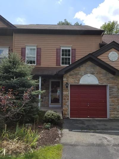 East Stroudsburg Single Family Home For Sale: 42D Sky View