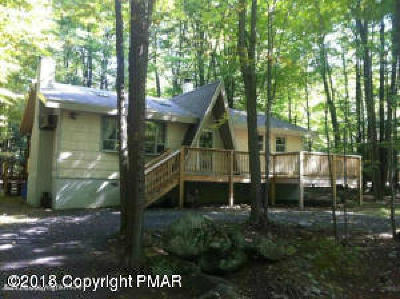 Pocono Lake Single Family Home For Sale: 111 Ottawa Trl