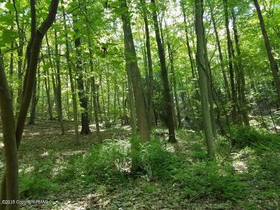 East Stroudsburg Residential Lots & Land For Sale: 191 E Of Rte 191