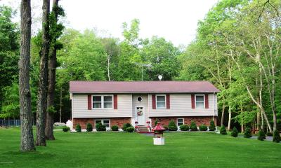 Stroudsburg Single Family Home For Sale: 148 Balson Road