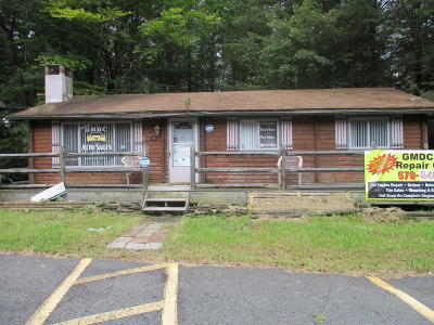 Blakeslee Commercial For Sale: 5119 Route 115 Rte