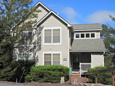 Tannersville Single Family Home For Sale: 372 Linden Ct