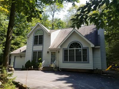 Pocono Lake Single Family Home For Sale: 174 Minisink Dr