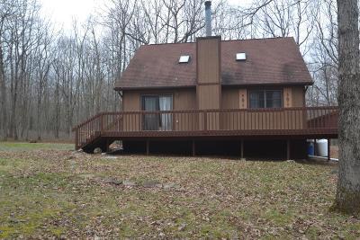 Towamensing Trails Single Family Home For Sale: 191 Kilmer Trl