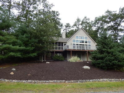Tannersville Single Family Home For Sale: 124 High Mtn