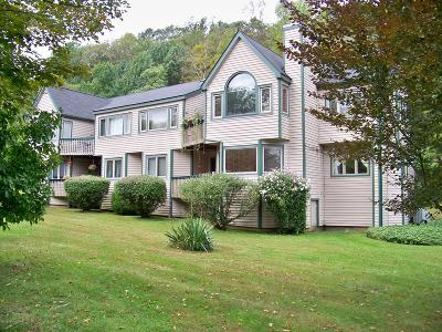 East Stroudsburg Single Family Home For Sale: 370 Hollow Rd #Bldg 1-U