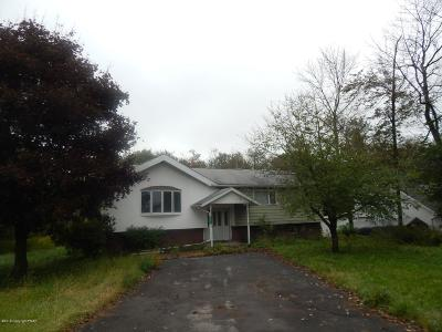 Blakeslee Commercial For Sale: 5642 Route 115 Rte