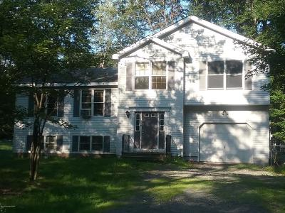 Pocono Summit Single Family Home For Sale: 3294 Red Run Rd
