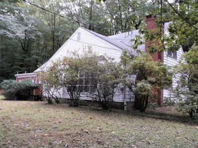 Stroudsburg Single Family Home For Sale: 5266 Glenbrook Rd