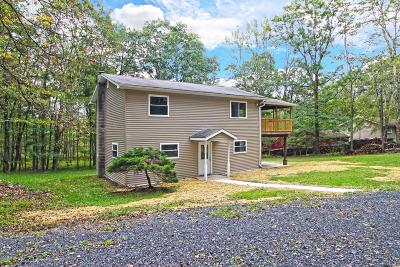 East Stroudsburg Single Family Home For Sale: 672 Cherry Lane Rd