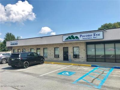 Brodheadsville Commercial For Sale: 208 Kevin Lane