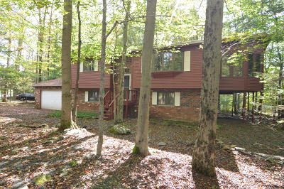Pocono Lake Single Family Home For Sale: 156 Choctaw Dr
