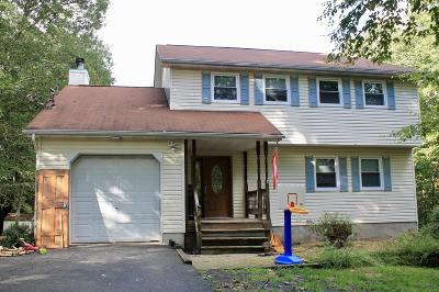 East Stroudsburg Single Family Home For Sale: 613 Sugar Works Dr