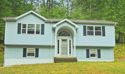 East Stroudsburg Single Family Home For Sale: 1131 Hunters Woods Drive