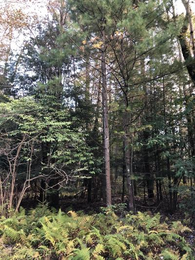 Lake Naomi, Timber Trails Residential Lots & Land For Sale: Tanglewood Dr