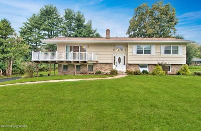 Stroudsburg Single Family Home For Sale: 309 Albert Rd