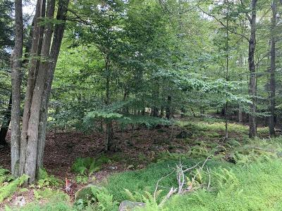 Gouldsboro PA Residential Lots & Land For Sale: $5,000