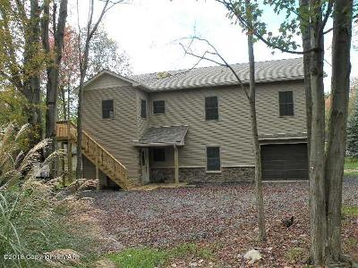 Pocono Lake Single Family Home For Sale: 204 Trout Creek Drive