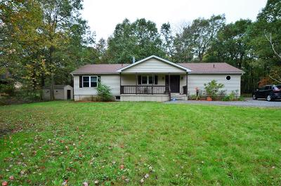 Jim Thorpe Single Family Home For Sale: 77 Deer View Dr