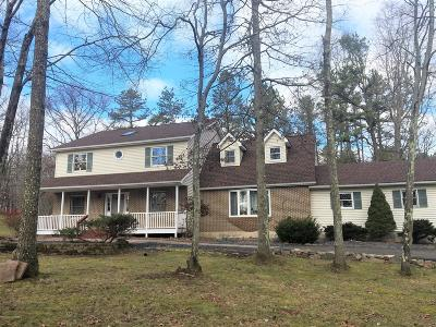 Stroudsburg Single Family Home For Sale: 116 Woods Dr