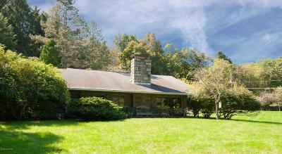 Stroudsburg Single Family Home For Sale: 1242 Mazzetti Rd