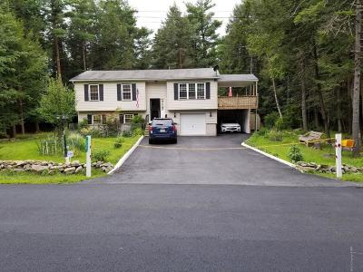 Pocono Summit Single Family Home For Sale: 331 Scotch Pine Drive