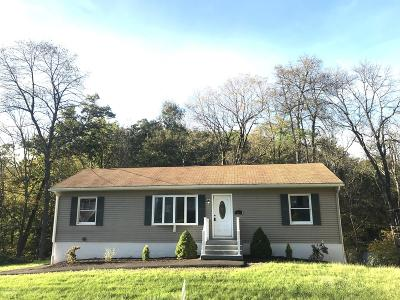 Stroudsburg Single Family Home For Sale: 214 Cherry Valley Road