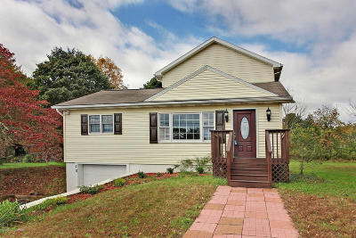 East Stroudsburg Single Family Home For Sale: 20 Brush Dr