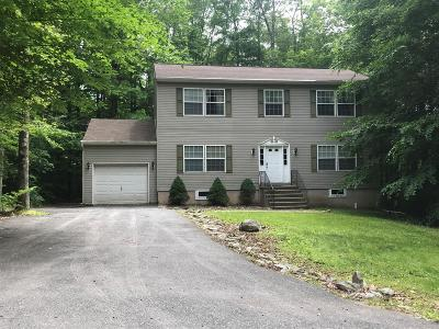 Pocono Lake Single Family Home For Sale: 208 Wechquetank Dr