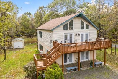 Albrightsville Single Family Home For Sale: 826 Stony Mountain Rd