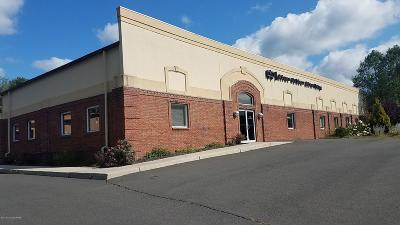 Stroudsburg Commercial For Sale: 6053 Route 209