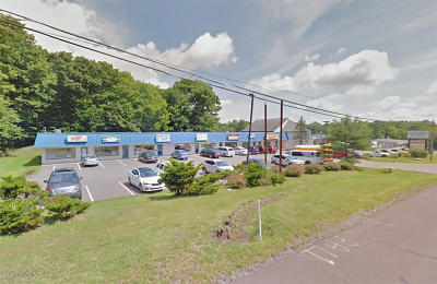 Pocono Summit Commercial For Sale: 2657 Route 940