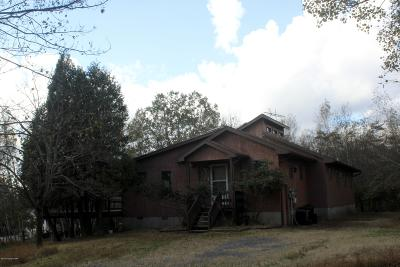 Albrightsville Single Family Home For Sale: 123 Upper Notch Rd