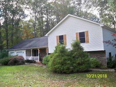 Saylorsburg Single Family Home For Sale: 559 White Birch Dr