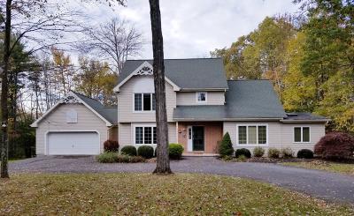 Kunkletown Single Family Home For Sale: 184 Maple Spring Dr