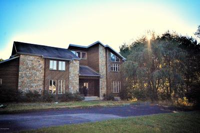Monroe County Single Family Home For Sale: 400 Blue Ridge Rd