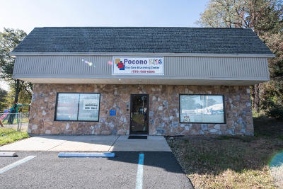 Cresco Commercial For Sale: 967 Route 390
