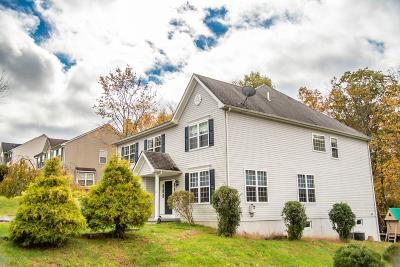 East Stroudsburg Single Family Home For Sale: 2342 Snapdragon Pt