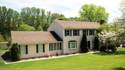 Bangor Single Family Home For Sale: 9321 Spring Brook Dr