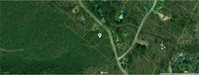 Cresco Residential Lots & Land For Sale: T 561 2 Devils Hole Road