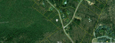 Cresco Residential Lots & Land For Sale: T 561 1 Devils Hole Road