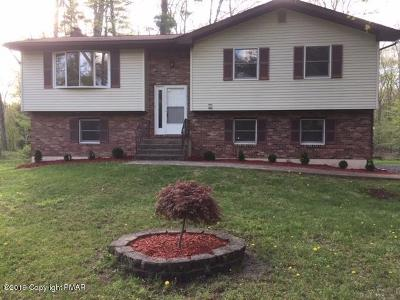 East Stroudsburg Single Family Home For Sale: 52 Bull Pine Rd