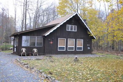 Pocono Lake Single Family Home For Sale: 295 Cheyenne Trl